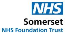 NHS Somerset - NHS Foundation Trust logo