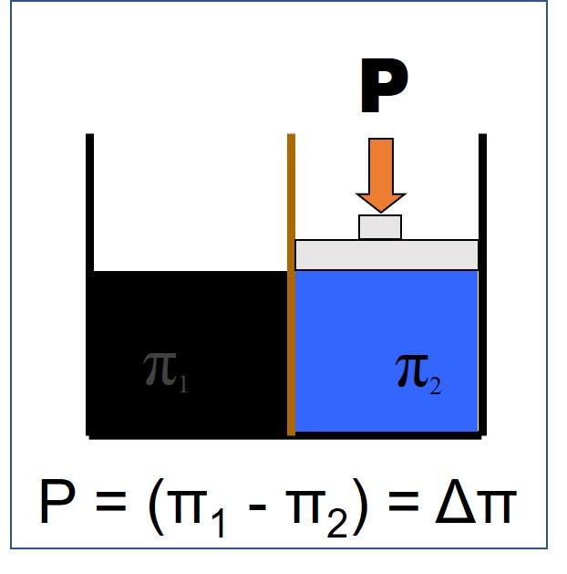 Osmosis diagram 2