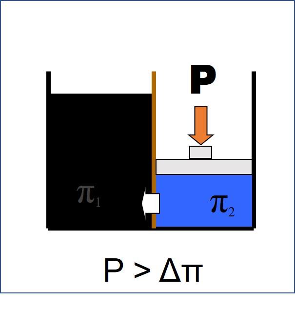 Osmosis diagram 1